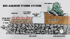Bio-Aquifer Storm System