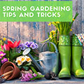 Spring Gardening Tips and Tricks